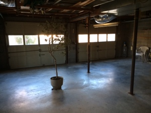 Roomy garage