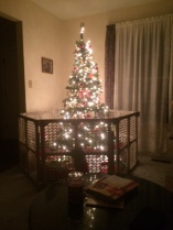 2014 Christmas tree complete with cat guard fence.