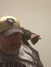 Ace on my shoulder