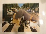 Elizabeth-McAfee-Tabby-Road-Signed-Print-Art